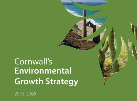 environmental-growth-strategy-cover1