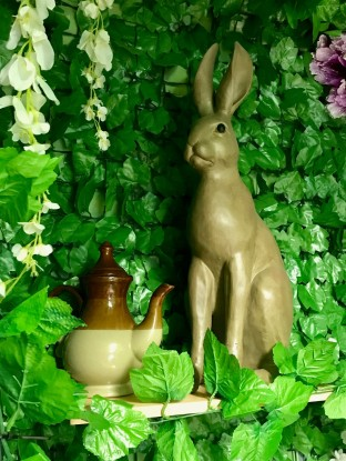 CCC Details Hare