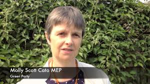 MEP Molly Scott Cato uses visit to Cornwall to call for urgent action to protect EU environmentalstandards